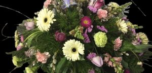 Gerbera Daisy Carnations and Tulip Casket Spray